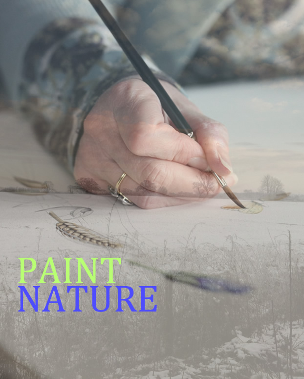 Paint Nature Commissions and Coaching from artist, Gael Sellwood